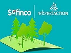 Sofinco-anniversaire-70-ans-reforest-action-70000-arbres